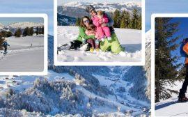ski de randonnée, ski de fond, raquettes, luge